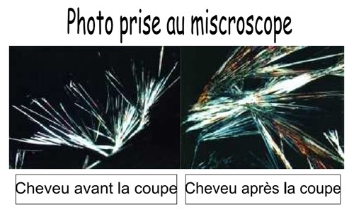 coupe energetique